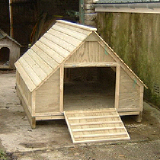 Domestic Duck House Plans Free