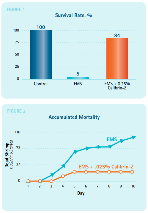Survival Rate & Accumulated Mortality