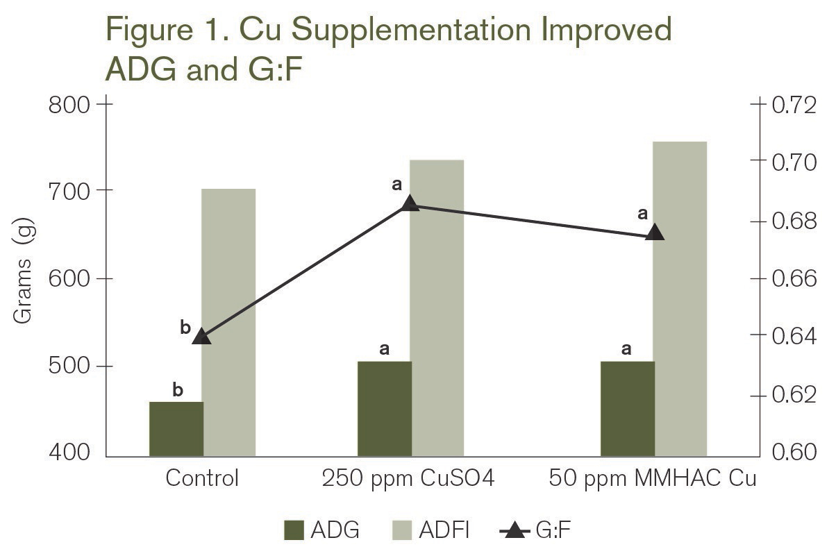 Figure 1. Cu Supplementation Improved ADG and G:F