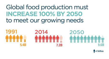 Enzymes are a key piece of the puzzle to feed 9 billion people