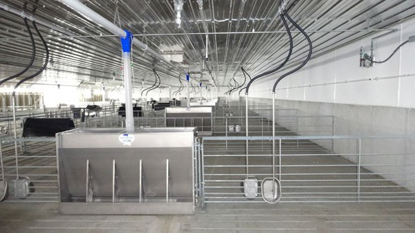 Interior view of a modern swine finisher constructed by Hog Slat