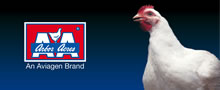 Aviagen - Arbor Acres - Poultry Breeders