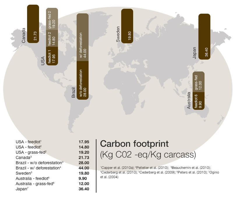 Beef Sustainability - Carbon footprint