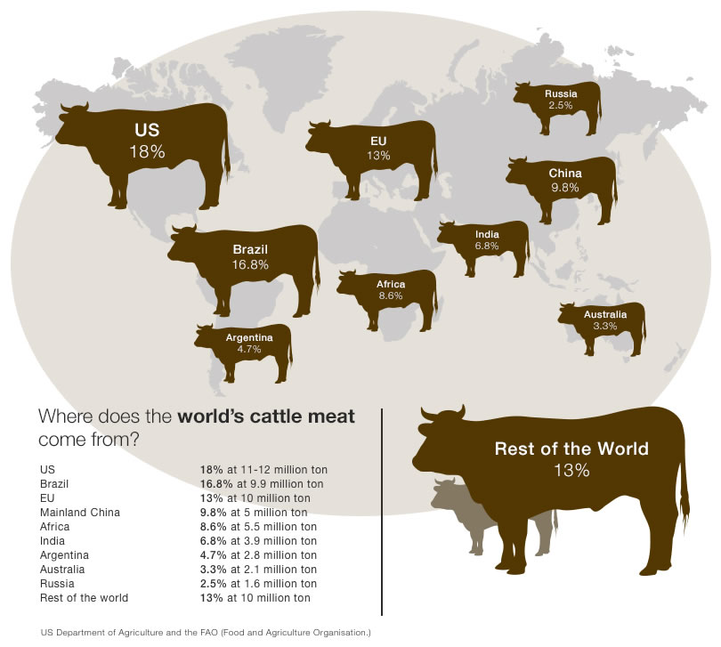 PPT – Beef Cattle Production PowerPoint presentation ...
