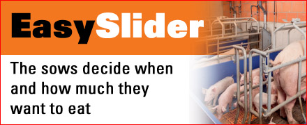 Easy Slider - Top quality and only from Big Dutchman