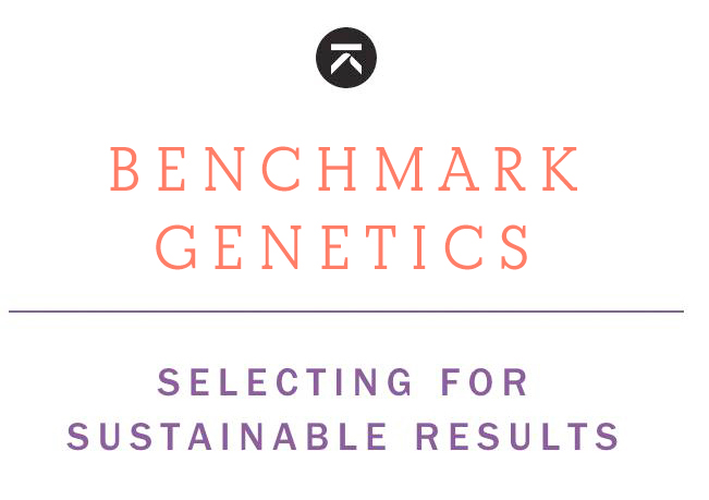 Breeding and Genetics - Selecting For Sustainable Results
