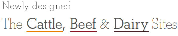 Introducing The Cattle, Beef & Dairy Sites