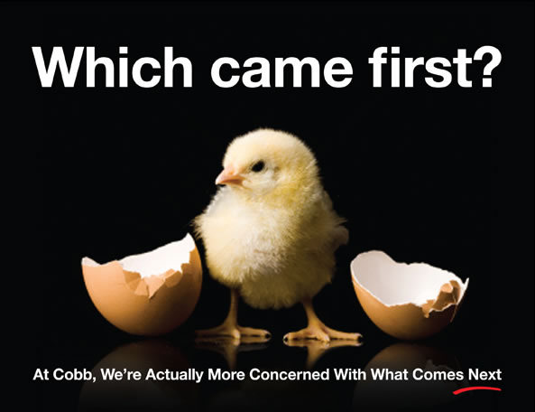 Which came first? - Cobb