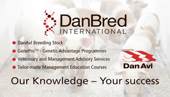 DanBred International