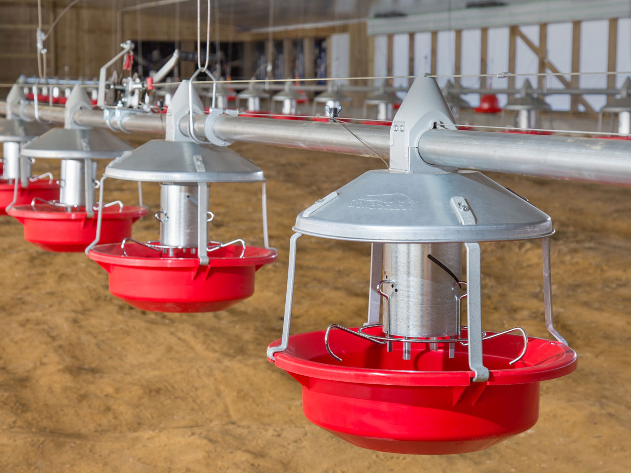 GrowerSELECT® Adult Turkey Feeders installed on GrowerSELECT turkey feed line tubing.