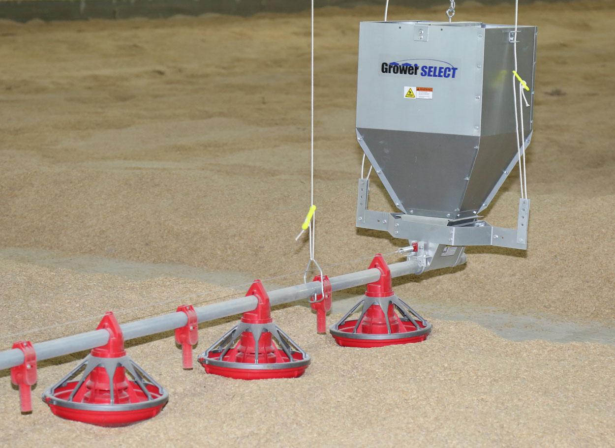 GrowerSELECT® unloader kits transition feed from the poultry hopper into the feed line pipe where Grow-Flex™ 44mm poultry auger conveys it through the house filling feeders. (Shown: Classic Flood™ chicken pan feeders and Kwik-Start chick drops.)