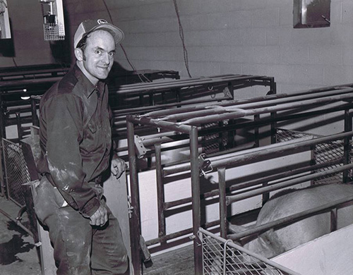 Hog Slat - Producer Jennings Humphreys with the farrowing stalls in the late 70's