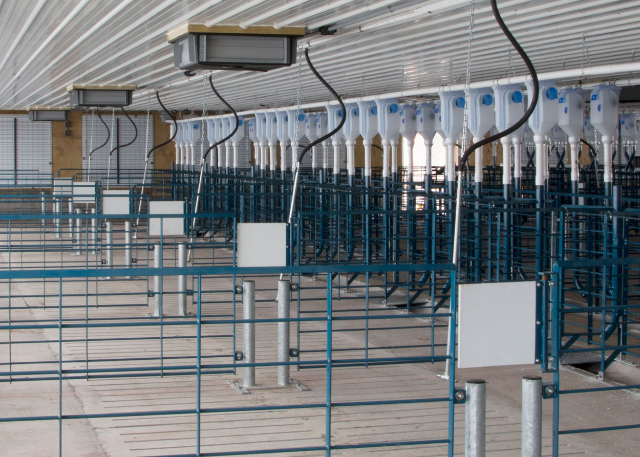 "Hog Slat stanchion pens can be installed with walk-through posts and optional ""saloon-style"" doors. The 3"" posts anchor the penning panels and allow workers to slip between them while checking sows in each pen. The swinging door discourages sows from attempting to jump through the opening."
