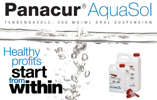 Panacur AquaSol®