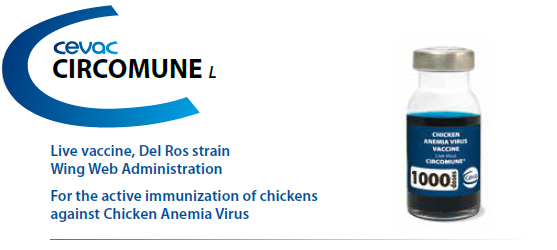 CIRCOMUNE® - For active immunization of chickens against Chicken Anemia Virus from CEVA SANTE ANIMALE