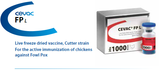CEVAC® FP L - For the active immunization of chickens against Fowl Pox from CEVA SANTE ANIMALE