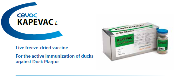 KAPEVAC® - For the active immunization of Duck's against Duck Plague from CEVA SANTE ANIMALE