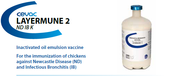 LAYERMUNE® 2 -For the immunisation of chickens against Newcastle Disease and Inectious Bronchitis from CEVA SANTE ANIMALE