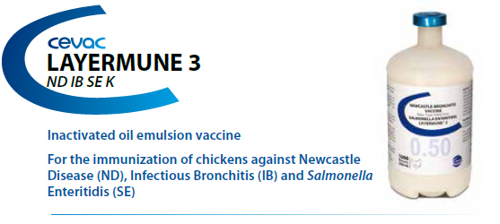 CEVA - LAYERMUNE® 3 0.5ml For the immunisation of chickens against Newcastle Disease, Infectious Bronchitis, Infectious Bursal Disease and Salmonella Enteritidis from CEVA SANTE ANIMALE