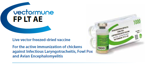 CEVA - VECTORMUNE® FP LT AE - For the active immunization of Chickens against Fowl Pox, Infectious Laryngotracheitis and Avian Encephalomyelitis from CEVA SANTE ANIMALE