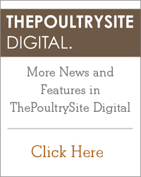 ThePoultrySite Digital