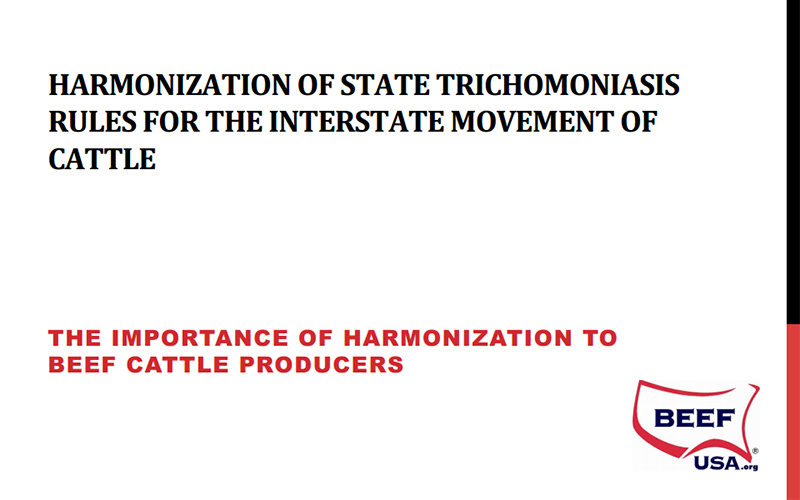 LifeTech - Harmonization of state trichomoniasis rules for the interstate movement of cattle