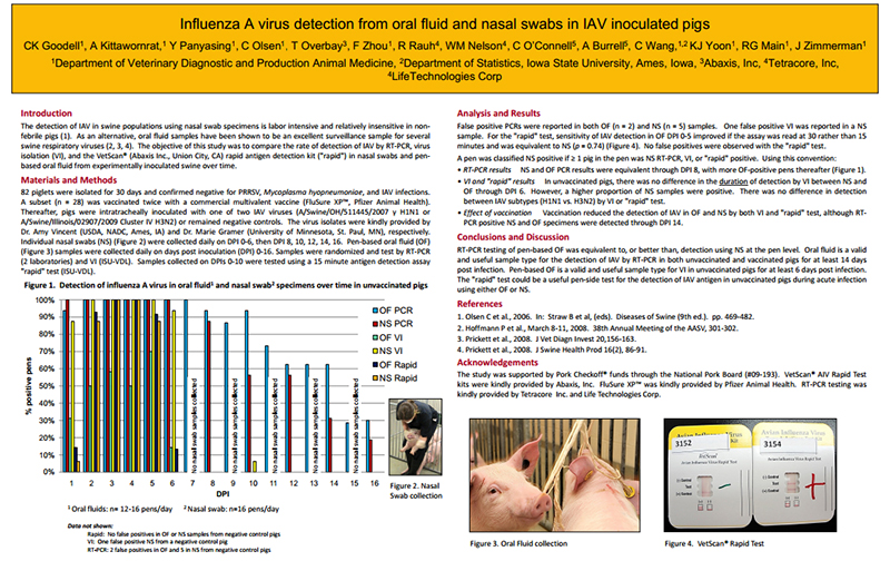 Thermo Fisher Scientific - Influenza A Virus Detection from Oral Fluid and Nasal Swabs in IAV Inoculated Pigs.