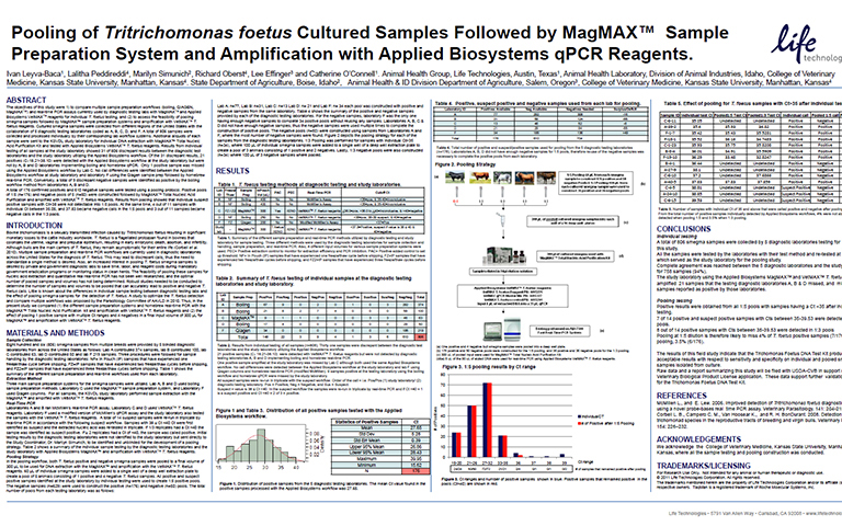 LifeTech - Pooling of Tritrichomonas foetus Cultured Samples Followed by MagMAX Sample Preparation System and Amplification with Applied Biosystems qPCR Reagents