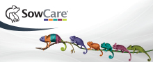 SowCare - MSD Animal Health