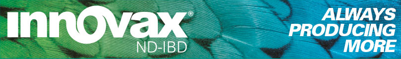 Innovax®-ND-IBD - MSD Animal Health