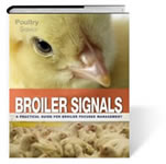 Broiler Signals: A practical guide for broiler focused management