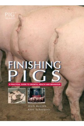 Finishing Pigs