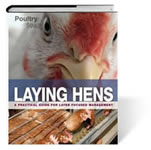 Laying hens - A practical guide for poultry-oriented management