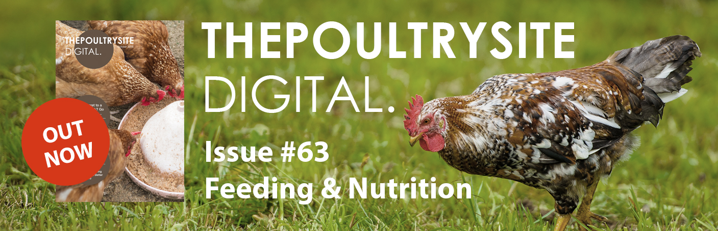 ThePoultrySite Digital #63 - Feeding & Nutrition