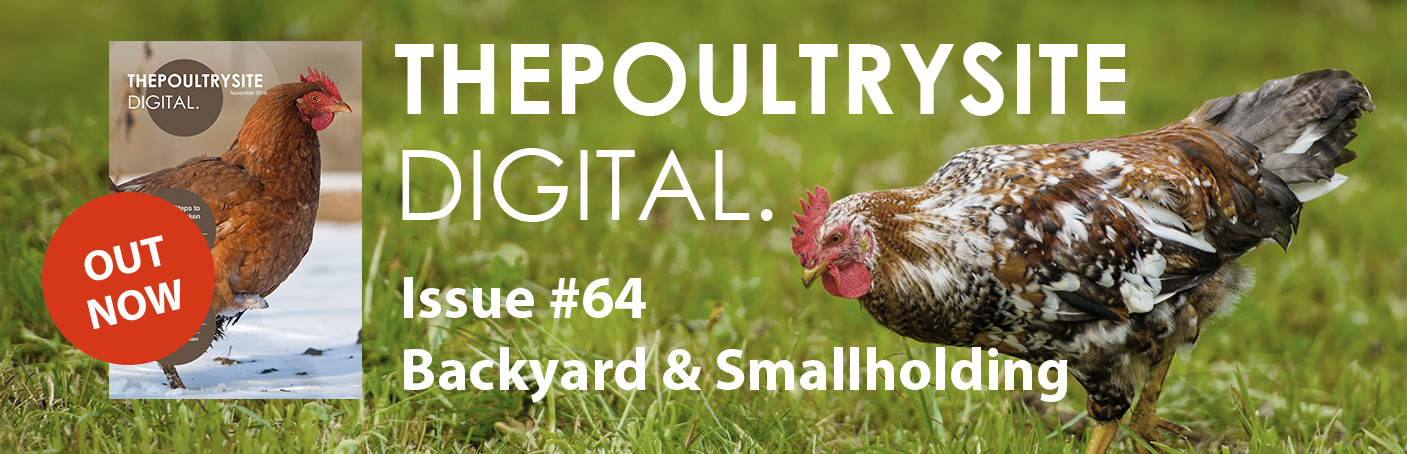 ThePoultrySite Digital #64 - Backyard & Smallholding