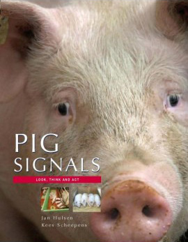 Managing Pig Health and the Treatment of Disease