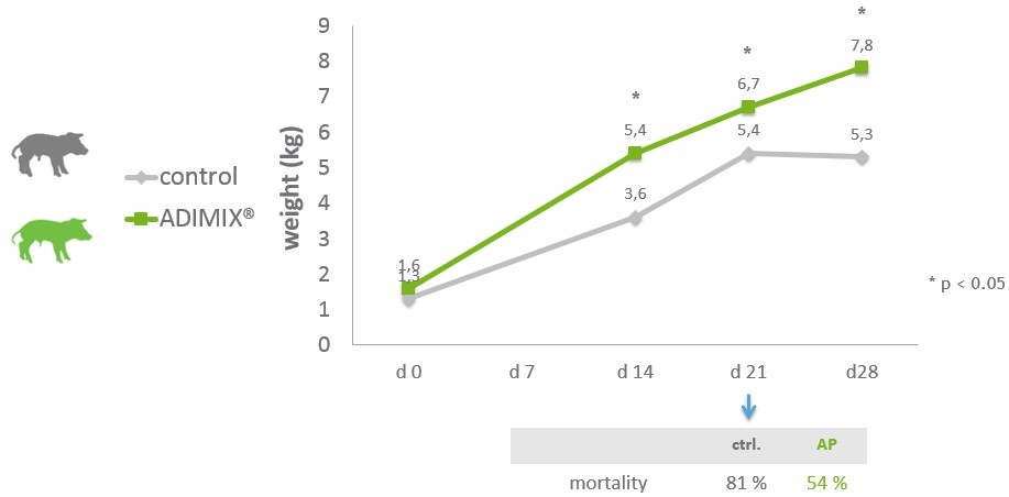 Figure 4: Average piglet weight over time and mortality percentage of piglets at weaning per group