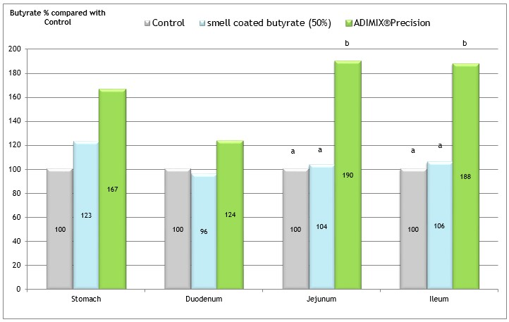 Figure 6: Results of the butyrate recovery (butyrate/DM content) of 50% smell coated butyrate and 30% ADIMIX®Precision in comparison with an unsupplemented control group