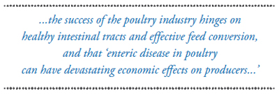 Success of the poultry industry