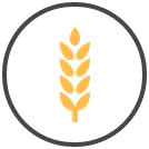 Randox Food Diagnostics - Mycotoxin