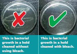 All residual bleach should be rinsed away with clean seawater