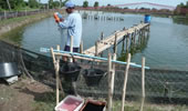 TheFishSite Knowledge Centre - Biosecurity