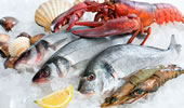 TheFishSite Knowledge Centre - Food Safety and Handling