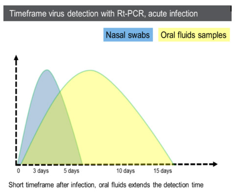 Short timeframe after infection, oral fluids extends the detection time